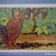 Coleccionismo Cromos antiguos: TARZAN FHER 1979 CROMO SIN PEGAR NUNCA Nº 60. Lote 152688830