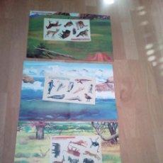 Coleccionismo Cromos antiguos: LOTE DE TRES DIORAMAS DONDE COLOCAR PEGATINAS SIN USO, ANTIGUOS, SERILUX 2000. Lote 155439578