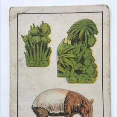 Coleccionismo Cromos antiguos: COLECCION ZOOLOGIA SERIE 124 Nº 9 TAPIR. Lote 156179994