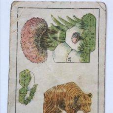Coleccionismo Cromos antiguos: COLECCION ZOOLOGIA SERIE 124 Nº 1O OSO . Lote 156180942