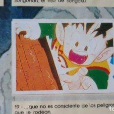 Coleccionismo Cromos antiguos: PANINI DRAGON BALL Z PRIMER ALBUM 1 CROMO RECUPERADO NUMERO 19. Lote 165751850