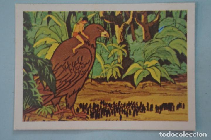 CROMO DE TARZAN DESPEGADO Nº 60 AÑO 1979 DEL ÁLBUM TARZAN DE FHER (Coleccionismo - Cromos y Álbumes - Cromos Antiguos)