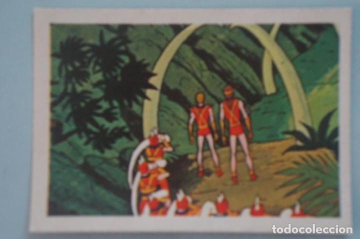 CROMO DE TARZAN DESPEGADO Nº 115 AÑO 1979 DEL ÁLBUM TARZAN DE FHER (Coleccionismo - Cromos y Álbumes - Cromos Antiguos)