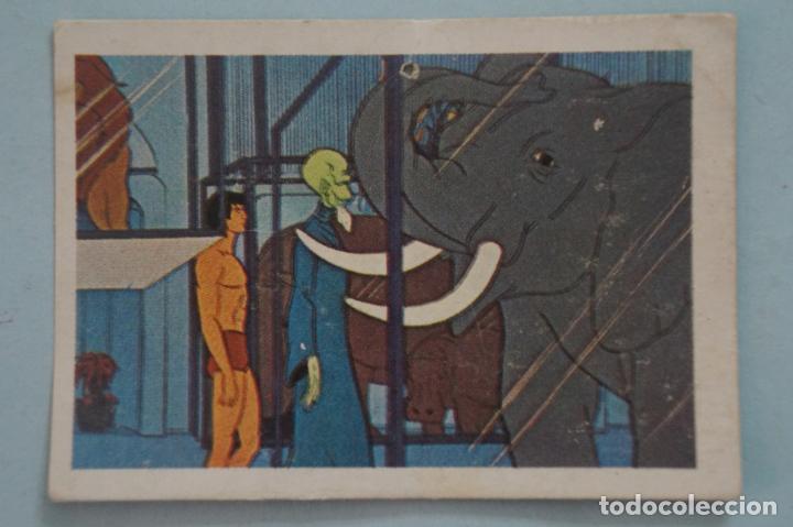 CROMO DE TARZAN DESPEGADO Nº 165 AÑO 1979 DEL ÁLBUM TARZAN DE FHER (Coleccionismo - Cromos y Álbumes - Cromos Antiguos)