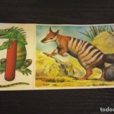 Coleccionismo Cromos antiguos: -BOLLYCAO FAUNA EN PELIGRO 1995 : 36 NUMBAT + LETRA I IGUANA. Lote 177199508