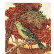 Coleccionismo Cromos antiguos: AVES AMATLLER BARCELONA AÑOS 20-30 VERDERÓN. Lote 177413184