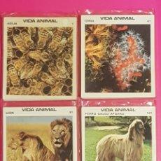 Coleccionismo Cromos antiguos: FHER 1981 VIDA ANIMAL 160 CROMOS TARJETAS COLECCION COMPLETA. Lote 181005136