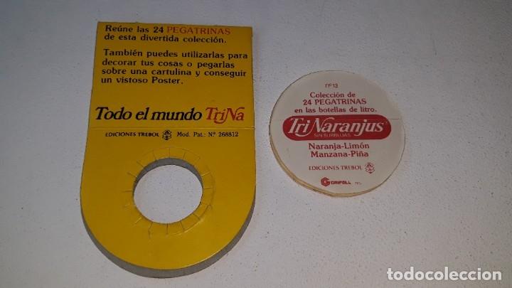 Coleccionismo Cromos antiguos: ANTIGUO CROMO Nº 13 TRINARANJUS - PEGATRINA CON SU FUNDA - TODO EL MUNDO TRINA - AÑOS 80 ED. TREBOL - Foto 3 - 181444533