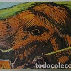 Coleccionismo Cromos antiguos: CROMO ALBUM NUESTRO MUNDO 2 DE BIMBO NUMERO 52 (NUEVO). Lote 181534693