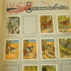 Coleccionismo Cromos antiguos: LOTE 328 CROMOS - ALBUM NESTLE (1932) LAS MARAVILLAS DEL MUNDO -TAMBIEN SUELTOS DESPEGADOS DEL ALBUM. Lote 186100137