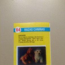 Coleccionismo Cromos antiguos: BIMBOVISION 1 RAZAS CANINAS Nº 64. Lote 194296732