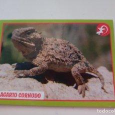 Coleccionismo Cromos antiguos: CROMO Nº 199 EL GRAN ÁLBUM DEL MUNDO ANIMAL 2019 ANIMALES 2019. Lote 194359626