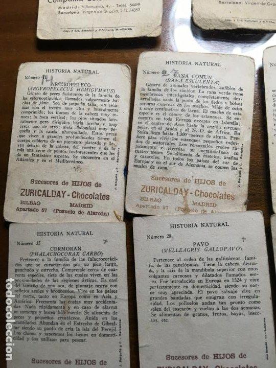 Coleccionismo Cromos antiguos: Lote 16 cromos chocolates Zuricalday,Bilbao.Chocolates Guillen, Bubí-Africa y Solsona, Vilr - Foto 7 - 194645920