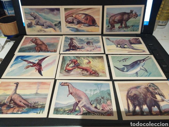 CROMOS ANIMALES PREHISTÒRICOS DOS SERIES COMPLETAS (Coleccionismo - Cromos y Álbumes - Cromos Antiguos)