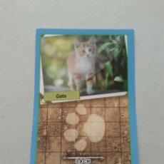 Coleccionismo Cromos antiguos: Nº 221 GATO - CROMO ANIMALES PANINI GRAN ÁLBUM MUNDO ANIMAL 2013 COLECCIÓN SOLIDARIA. Lote 206295455