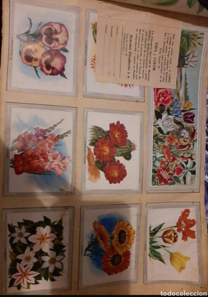 Coleccionismo Cromos antiguos: Sobre colección Vida y Color - Foto 2 - 206840410