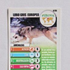 Coleccionismo Cromos antiguos: CROMO Nº 6 LOBO GRIS EUROPEO, COLECCIÓN ACCIÓN RESCATE, PANRICO-BOLLYCAO, 2004. Lote 207265705