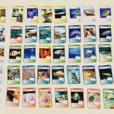 Coleccionismo Cromos antiguos: 63 CROMOS SUPER ANIMALS 3. SUPERMERCADOS CONDIS. Lote 210619488