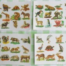 Coleccionismo Cromos antiguos: CALCOMANIAS ORTEGA.10 LÁMINAS DE ANIMALES VARIADAS. AÑOS 60 DEL SIGLO PASADO. MUY BUEN ESTADO.. Lote 218203091