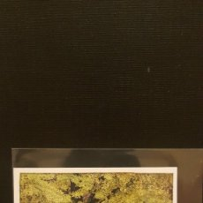 Coleccionismo Cromos antiguos: PANINI ANIMALES 2020 - Nº 22. Lote 221710036