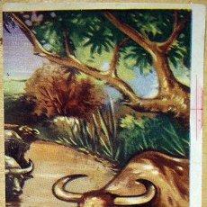 Coleccionismo Cromos antiguos: CROMO ALBUM VISION DE ASIA DE CHOCOLATES TORRAS Nº 77 (RECUPERADO). Lote 221993798