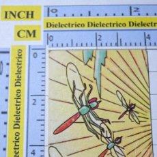 Coleccionismo Cromos antiguos: CROMO CROMITO TROQUELADO. LA ABEJA MAYA Nº 240 AÑO 1978 QUELCOM.. Lote 222396722