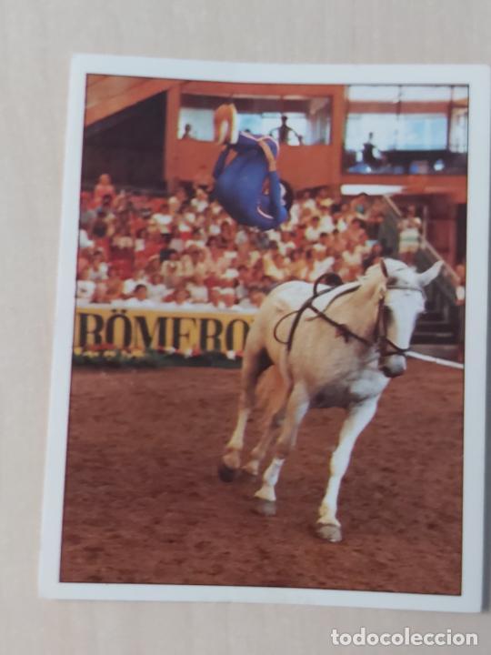 Nº 155 CROMO - ALBUM CABALLOS - COMPAÑEROS DEL HOMBRE HACE TIEMPO - PANINI 1990 - CROMO SIN PEGAR (Coleccionismo - Cromos y Álbumes - Cromos Antiguos)