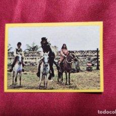 Coleccionismo Cromos antiguos: EL CORSARIO NEGRO. CROMO Nº 67. PANRICO. 1977. NUEVO. NUNCA PEGADO. Lote 257481565