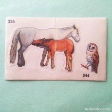 Coleccionismo Cromos antiguos: ALBUM LOS ANIMALES Y SU MUNDO . CROMOTINAS MOVIBLES Nº 236-244. SIN PEGAR. Lote 269229828