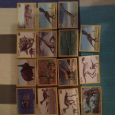 Coleccionismo Cromos antiguos: 19 CROMOS DINOSAURS DINOSAURIOS PANINI BIMBO PANRICO PHOSKITOS CROPAN BOLLYCAO DONETTES. Lote 295526463