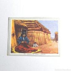 Coleccionismo Cromos antiguos: (51.10) ANTIGUO CROMO. N°343 CHIZA DE CAÑAS Y JUNCOS. Lote 297385198