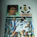 Cromos de Fútbol: CROMO COLOCA BERNARDO REAL MADRID CROMOS ALBUM LIGA FUTBOL EDICIONES ESTE 1983 - 1984 83-84 . Lote 25008864