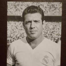 Cromos de Fútbol: CARTA RAMÓN GROSSO - REAL MADRID - MAGIC BOX INTERNATIONAL. Lote 43023400