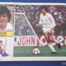 Cromos de Fútbol: 82-83 ESTE. REAL MADRID SIN PUBLICIDAD ZANUSSI CAMACHO. Lote 59122855