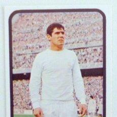 Cromos de Fútbol: CROMO RUIZ ROMERO 73 74 SANTILLANA R.MADRID Nº 189 1973 1974 SIN PEGAR MUY BUEN ESTADO. Lote 83449436