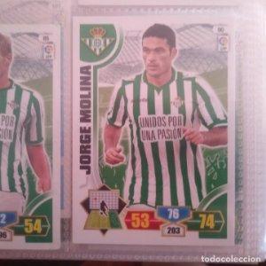 Nº 90 Jorge Molina Real Betis Balompié Adrenalyn 2013 2014 13 14 Panini Trading card game Liga BBVA