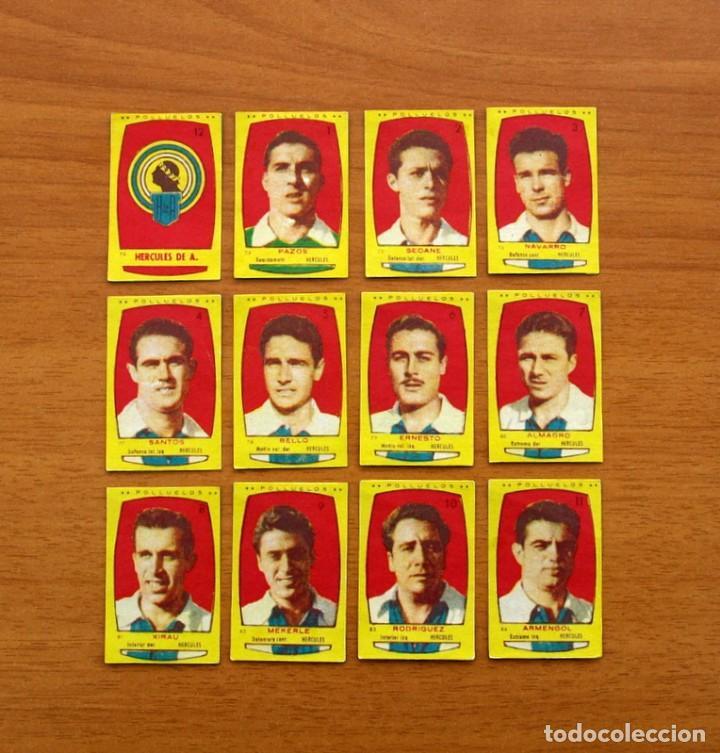 HÉRCULES - EQUIPO COMPLETO - AZAFRÁN POLLUELOS 1954-1955, 54-55 - NOVELDA - NUNCA PEGADOS (Coleccionismo Deportivo - Álbumes y Cromos de Deportes - Cromos de Fútbol)