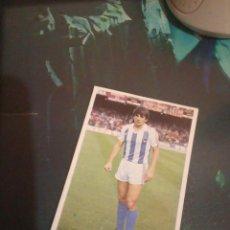 Cromos de Fútbol: CELAYETA REAL SOCIEDAD ED CANO 85 86 CROMO FUTBOL LIGA 1985 1986 - DESPEGADO - 271. Lote 194741847