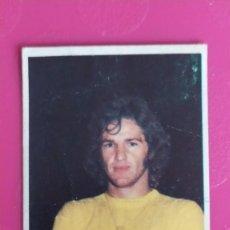 Cromos de Fútbol: MIGUEL ANGEL LAS PALMAS FINI 75 76 1975 1976 RECUPERADO. Lote 206180026