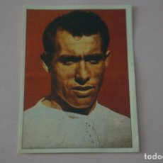 Figurine di Calcio: CROMO DE FUTBOL PAHIÑO REAL MADRID C.F. SIN PEGAR Nº 26 ALBUM REAL MADRID 1994-1995/94-95 PANINI. Lote 261327300