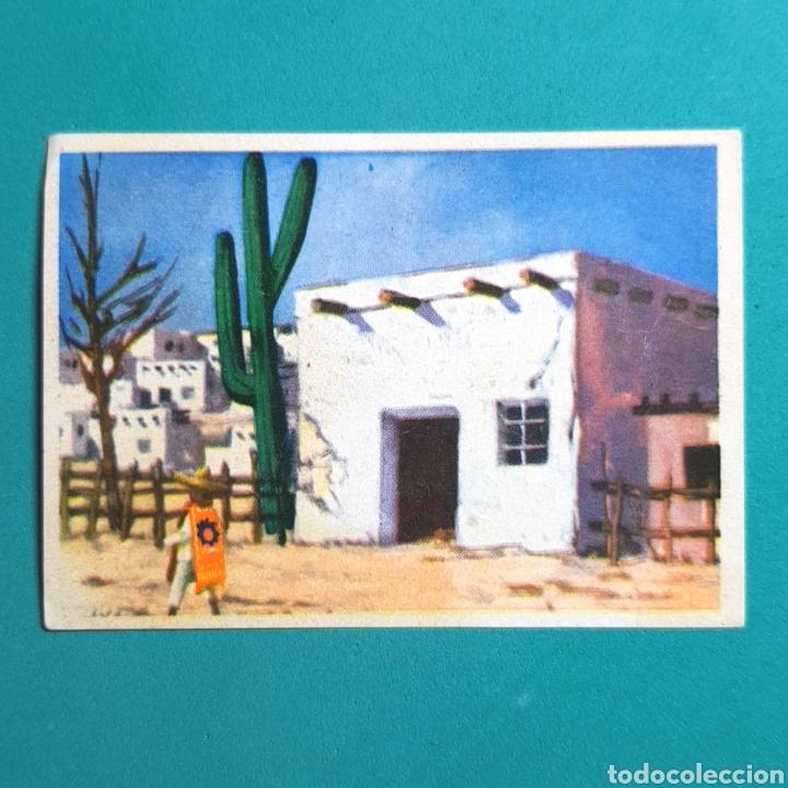 (52.9) CROMO (NUNCA PEGADO). ALBUM BIMBO 1963 - CONOCIMIENTOS UNIVERSALES - N°238 (Coleccionismo Deportivo - Álbumes y Cromos de Deportes - Cromos de Fútbol)