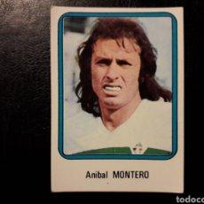 Cromos de Fútbol: MONTERO ELCHE N° 80 VULCANO 75 76 1975 1976. SIN PEGAR. VER FOTOS. PEDIDO MÍNIMO 3€.. Lote 295553678