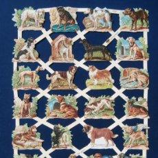 Coleccionismo Cromos troquelados antiguos: LAMINA CROMOS TROQUELADOS EF- 7337. PERROS.GRAN BRILLO Y RELIEVE.. Lote 245482465