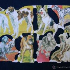 Coleccionismo Cromos troquelados antiguos: LAMINA CROMOS TROQUELADOS MLP- 1548. PERROS. RELIEVE.. Lote 180280545