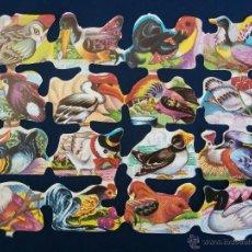 Coleccionismo Cromos troquelados antiguos: LAMINA CROMOS TROQUELADOS ESPAÑOLES FHER ( FB ), AVES DIVERSAS. Lote 218638723