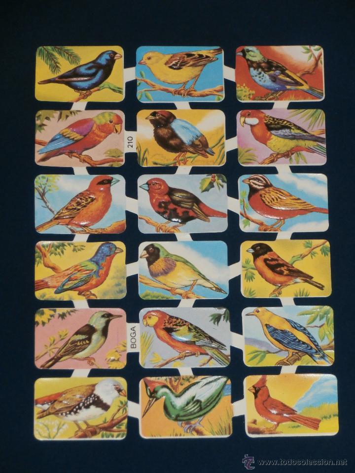 LAMINA CROMOS TROQUELADOS BOGA-210. PAJAROS. RELIEVE BRILLO (Coleccionismo - Cromos y Álbumes - Cromos Troquelados)
