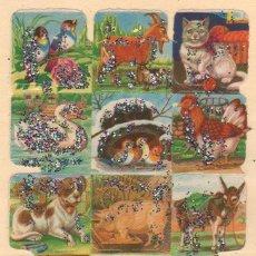 Coleccionismo Cromos troquelados antiguos: ANTIGUA LÁMINA DE CROMOS ESTRELLITAS Nº 33 ARGENTINA DEL AÑO 1973. Lote 49375553