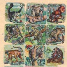 Coleccionismo Cromos troquelados antiguos: ANTIGUA LÁMINA DE CROMOS ESTRELLITAS Nº 32 ARGENTINA DEL AÑO 1973. Lote 49375566