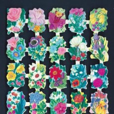 Coleccionismo Cromos troquelados antiguos: 2002R - ANTIGUA LAMINA DE CROMOS TROQUELADOS EVA - BONITO BRILLO , RELIEVE - EVA Nº 101. Lote 52842145