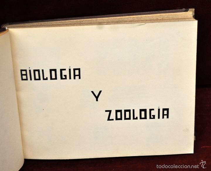Coleccionismo Cromos troquelados antiguos: INTERESANTE Y CURIOSO ALBUM ARTESANAL DE BIOLOGIA Y ZOOLOGIA DE PRINCIPIOS DEL SIGLO XX - Foto 2 - 58391490